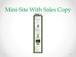 Teaching Green PLR Product Minisite