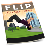 Flip Your Energy Switch PLR