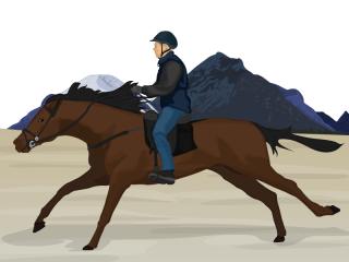 Equestrian Confidence