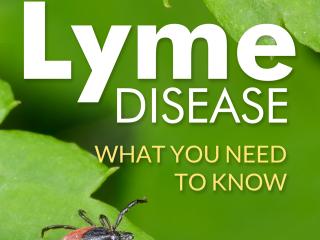 Lyme Disease Health PLR